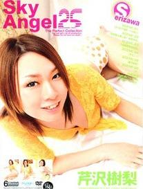 Sky Angel Vol 25